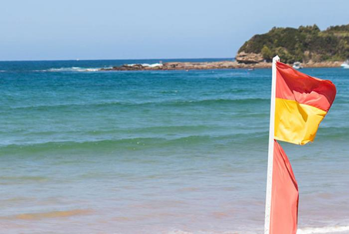 Terrigal and Coastal Lagoons Audit