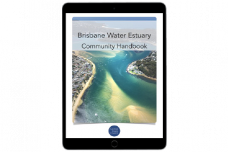 Brisbane Water Estuary