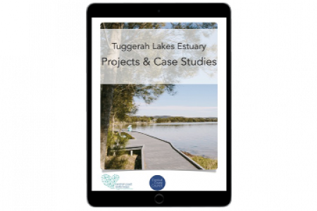 Tuggerah Lakes Estuary Projects & Case Studies