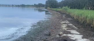 Examples of poor nearshore water quality and wrack in water