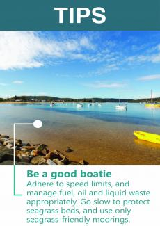 Be a good boatie