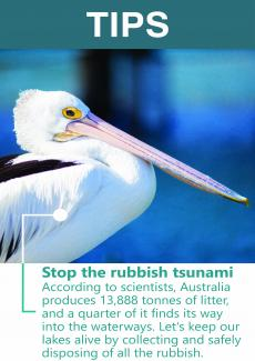 Stop the rubbish